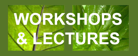 Workshops and Lectures